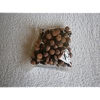iqgamesroom - Casquillos atornillables para tacos de billar y snooker (100 unidades, 10 mm)