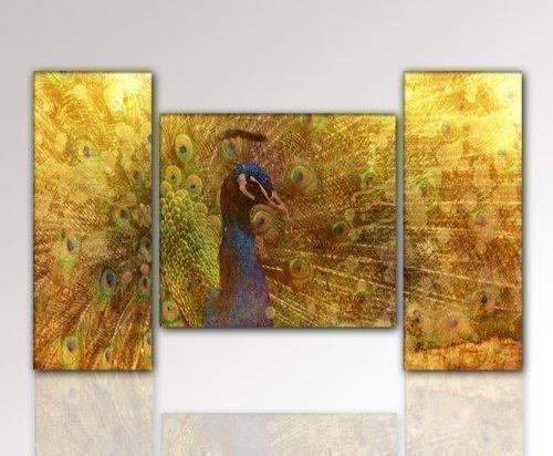 WOW - Top Angebot !!! 3-teiliges Bild Vogel Pfau (pfau-120x70cm) Collage Wandbild modern, KULT Poster auf Leinwand ideal als Weihnachtsgeschenk oder Geburtstagsgeschenk. Schöner & moderner Kunstdruck auf Leinwand und Rahmen aus Holz. Bild Typ Deko für Wohnzimmer oder Schlafzimmer Kult Klassiker Design Collage. Wohnideen zum kleinen Preis. Made in Germany - Qualität aus Deutschland (Kult Poster)