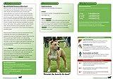 PrimeVal Stressless Hund – 135 g - 2