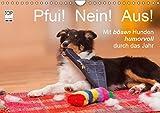 Pfui! Nein! Aus! - Mit bösen Hunden humorvoll durch das Jahr (Wandkalender 2019 DIN A4 quer): Zwölf lustige Hundefotos bringen Sie das ganze Jahr zum ... (Monatskalender, 14 Seiten ) (CALVENDO Tiere)