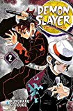 Demon slayer. Kimetsu no yaiba: 2