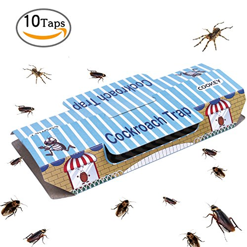 cookey-cockroach-traps-for-home-pest-control-kill-roaches-ants-spiders-and-other-bugs-insects-with-b