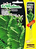 "Virginia Tabak ""Virgin Golta"" Tobacco Nicotiana tabacum Echter Rauchtabak"