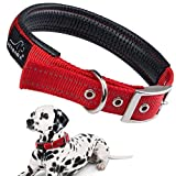 Hundehalsbänder Reflektierend, PETBABAB Gepolstert Verstellbar Nylon Training Hunde Halsband für Hunde Rot