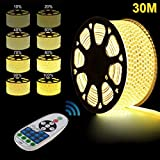 LED Strip, 30m Warmweiß LED Streifen, Led Stripes LED Lichterschlauch Lichtband, GreenSun LED Lighting 5050SMD Lichterkette Wasserdicht IP67 Lampenband mit RF Controller