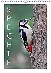 Spechte (Wandkalender 2018 DIN A4 hoch): Faszinierende Nahaufnahmen europäischer Spechte (Monatskalender, 14 Seiten ) (CALVENDO Tiere) [Kalender] [Apr 01, 2017] Wolf, Gerald