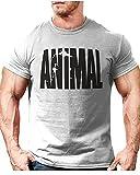 Minetom Herren T-Shirt Print Shirt Casual Basic O-Neck Herren Animal Trainingsanzug T-Shirt Fitness Kurzarm Sport-Shirt Muscle Shirt Bodybuilding Tee Grau EU XL