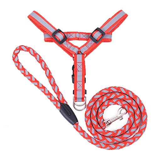 Hund Kinderwagen Joggen (Haustier Hund Reflektierende Hundehalsband, Haustier Brustgurt stark strapazierfähig mit Nylon Leine Seil Set)