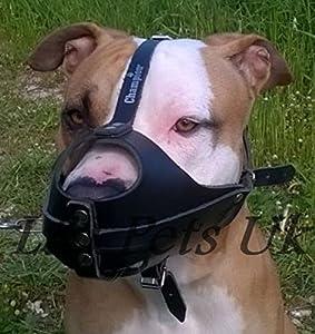 NEW Lumière Muselière en cuir pour chien Amstaff et autres Museau