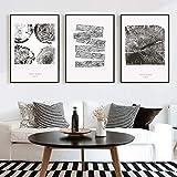 XWArtpic Schwarz und Weiß Baum jährlichen Ring Muster Leinwand Gemälde Nordic Wandkunst Poster Drucken Pop Bilder für Wohnzimmer Dekoration 50 * 70 cm