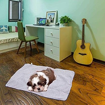 ThinkPet Multi-function Potable Waterproof Car Seat Protector Blanket for Pet,Best Choice for Outdoor Indoor Activities… 7