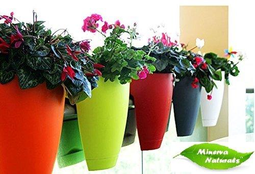 Minerva-Naturals-Balcony-Railing-PlanterSet-Of-4
