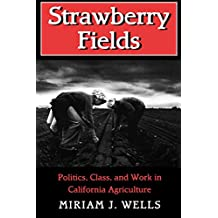 Strawberry Fields: Politics, Class and Work in California Agriculture (Anthropology of Contemporary Issues (Paperback))