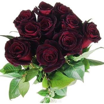 Blumenstrauss Schwarze Rose Mit 10 Schwarze Rosen Und Schleierkraut