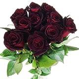 10 schwarze Rosen - langstielig und vasenfertig