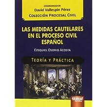 Medidas cautelares en el proceso civil español,Las