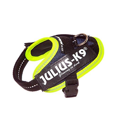 Julius-K9, 16IDC-FARNE-B1, IDC Powergeschirr, hundegeschirr, Größe: Baby 1, Jeans mit neon Randverzierung