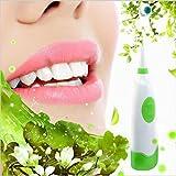 Minebdfe Heißer Rotary Elektrische Zahnbürste Erwachsene Elektrische Zahnbürste Kinder Zahnbürste 2 Bürstenköpfe Wasserdichte Rotation Oral Brushes Green