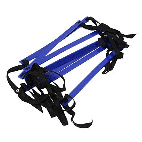 Gaoominy 10 Fuesse Agilitaet Speed Leiter Leiter Trainingsleiter Schnell 7 Flache Sprosse Speed Leiter-blau (10 Fuß Leiter,)