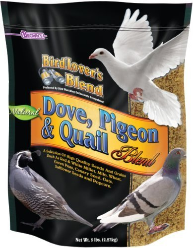 F.M. Brown's Bird Lover's Blend Dove Food for Pets, 5-Pound by F.M.Brown's (Brown F Bird M Food)