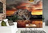 Wallsticker Warehouse Leopard Fototapete - Tapete - Fotomural - Mural Wandbild - (126WM) - XL - 208cm x 146cm - VLIES (EasyInstall) - 2 Pieces