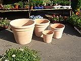 Blumentopf echt Terrakotta 39 cm , Blumenkübel für Garten und Wohnung Terracotta ........... kein Kunststoff, Blumen