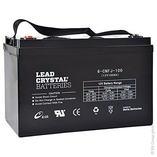 Lead Crystal - Akku Bleikristall 6-CNFJ-100 12V 100Ah F3 -