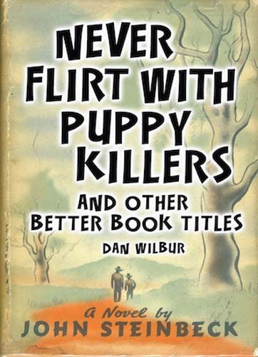 Never Flirt with Puppy Killers: And Other Better Book Titles -