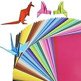 Carta per Origami,Carta Pieghevole 100 fogli 15 x 15 cm Doppia Faccia Colorata Origami per Bambini Progetti Artistici e DIY Artigianato