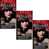 Brillance Intensiv-Color-Creme, 887 Mahagoni Satin, 3er Pack (3 x 1 Stück)
