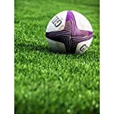 Sport Rugby Ball Field World Cup Photo Large Wall Art Poster Print Thick Paper 18X24 inch Ballon Champ Monde Photographier Mur Impression d'affiches