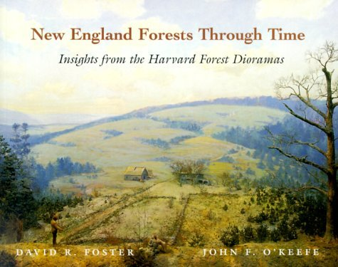 New England Forests Through Time : Insights from the Harvard Forest Dioramas by David R. Foster (2000-08-05)