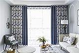 AdoraCurtain Hochwertige Atmosphäre in AB-Version Baumwolle und Leinen Stickerei Gardinen Stoff Wohnzimmer Schlafzimmer Erkerfenster 2X W55 xL90(2xWxL 2x140x230 cm)