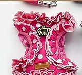 Bruder Cat Dog Polyester Tupfen Crown Geschirr mit Führleine Set