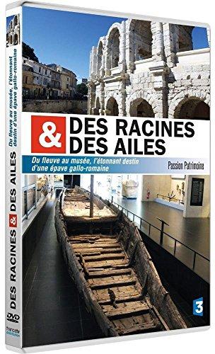 Des racines et des ailes - Passion Patrimoine - Du fleuve au musée, l'étonnant destin d'une épave gallo-romaine