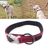 Yshen Collare per Cani a LED Collare per Cani con Collare Illuminato per Cani Pet reciciabili USB Prodotto per Animali da Compagnia per Piccoli LED di Medie Dimensioni