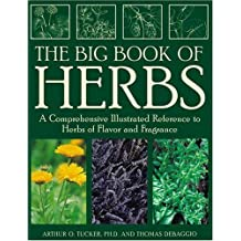 The Big Book of Herbs: A Comprehensive Illustrated Reference to Herbs of Flavor and Fragrance by Arthur O. Tucker (2000-10-28)