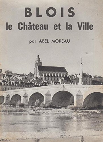 Blois le château et la ville