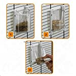 Beautifully Shaped Bird Cage With Basic Accessories For Parakeets, Black Grid - Can Be Partitioned Into Two Areas 4