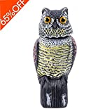 Natural Enemy Rotating Head Horned Owl is a convenient, and effective garden protector. The life-like design and paint paired with the wind controlled rotating mechanism and light control system makes it the perfect preventative measure against birds...