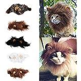 ryask (TM) Animal Chat Chien émulation Tête Cheveux crinière oreilles Lion déguisement de PAC automne hiver Silencieux écharpe
