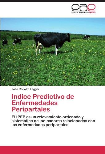 Indice Predictivo de Enfermedades Peripartales: El IPEP es un relevamiento ordenado y sistemático de  indicadores relacionados con las enfermedades peripartales por José Rodolfo Lagger