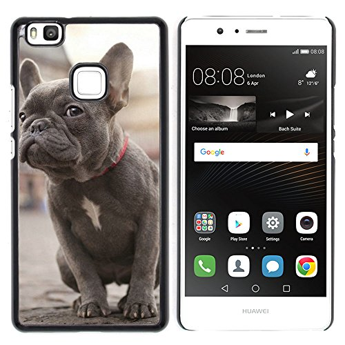OB-star ( Bulldog francés ) Huawei P9 Lite / G9 Lite (Not for P9)Huawei P9 Lite / Huawei G9 Lite (Not for P9) Impreso Colorido Protector Duro Espalda Funda Piel De Shell