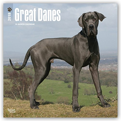 Descargar Libro Great Danes International - Dänische Doggen 2018 - 18-Monatskalender: Original BrownTrout-Kalender - mit freier DogDays-App de Browntrout Publishers
