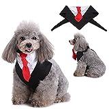 Handfly Pet Suit Krawatte Hund Anzug Krawatte Katze Anzug Krawatte süß und Mode mit dem Dreieck teilnehmen Hochzeit Festival