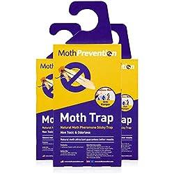 Prevención de polillas en la ropa, trampas para polillas, de la marca Moth Prevention, 3 unidades