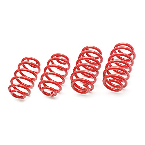 Eibach E20-20-011-01-22 Performance Sportline Springs