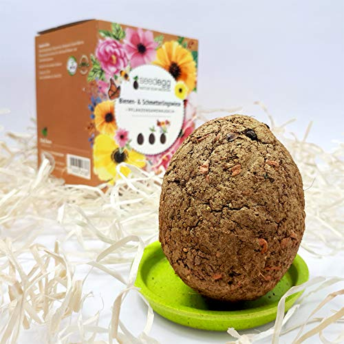 FeelGreen Seedegg Organic Bee & Butterfly Lawn, 1 Set Handmade Plant Ball in Goose Egg Size, Sustainable Gift Idea (100% Eco Friendly), Natural For Throwing, Made in Austria