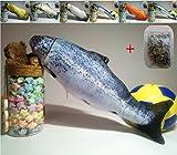 Maibar juguetes para gatos pescado hierba gatera juguetes gatos 3D inteligencia mariposa gatos hierba gatera Interactivo para gatos de interior (Trout, 30cm)