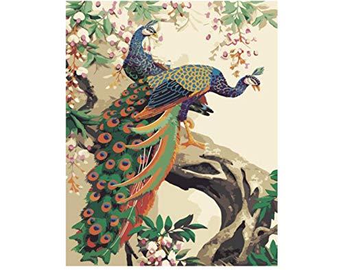 Vazelu Baum Pfau DIY Malen Nach Zahlen Tierölgemälde Auf Leinwand Handgemalte Bilddekoration Acrylfarbe Malen Nach Zahlen Für Erwachsene 40x50cm Kein Rahmen